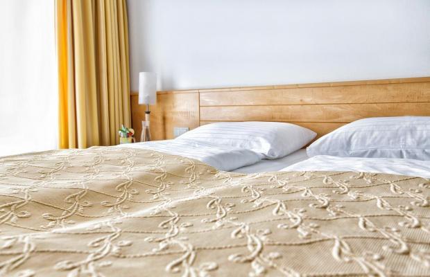 фотографии Amadeo Hotel Schaffenrath изображение №24