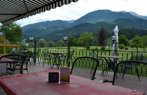 фотографии Golfhotel Berghof изображение №16
