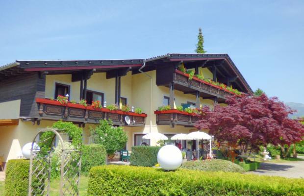 фотографии Villa Dorothy изображение №8