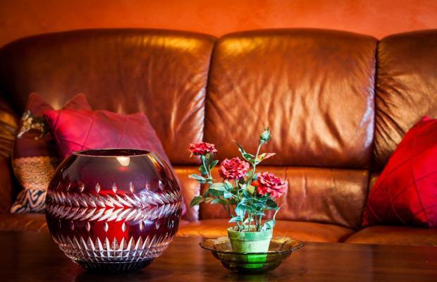 фото отеля Exclusive Apartment Sylvie изображение №9