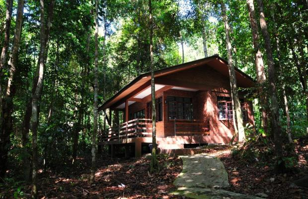 фото Permai Rainforest Resort изображение №10