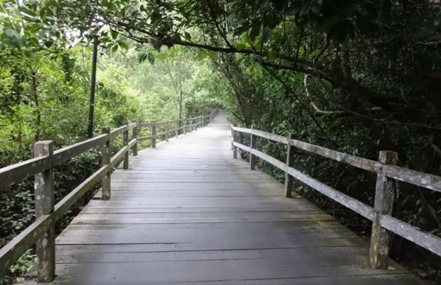 фотографии Permai Rainforest Resort изображение №4