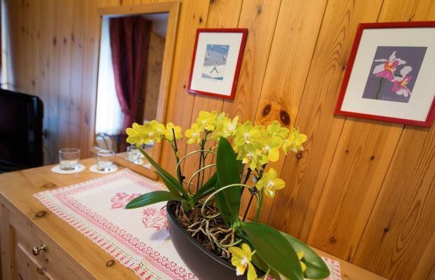 фотографии отеля Hotel Livigno изображение №51