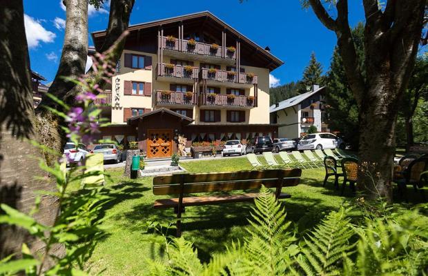 фотографии Hotel Alpina изображение №44