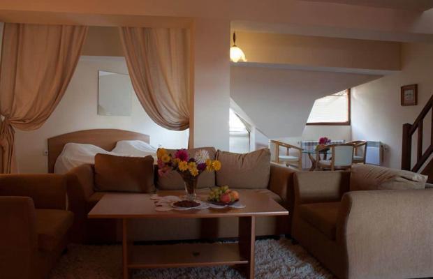 фотографии отеля Алекс (Alex) изображение №35
