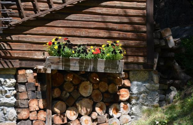 фото отеля Svizzero изображение №21