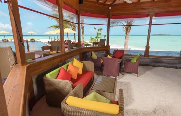 фотографии Dhigufaru Island Resort изображение №16
