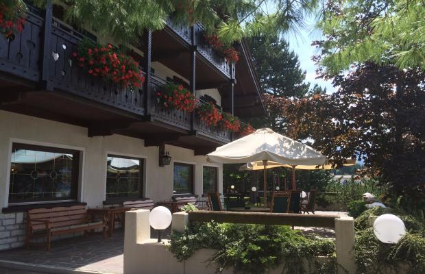 фото отеля Hotel Villa Wilma изображение №13
