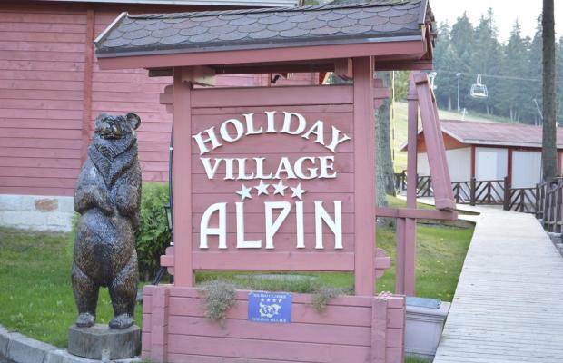 фото Альпин (Alpin) изображение №14
