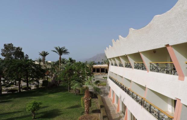 фото отеля Coral Resort Nuweiba (ех. Hilton Nuweiba Coral Resort) изображение №17