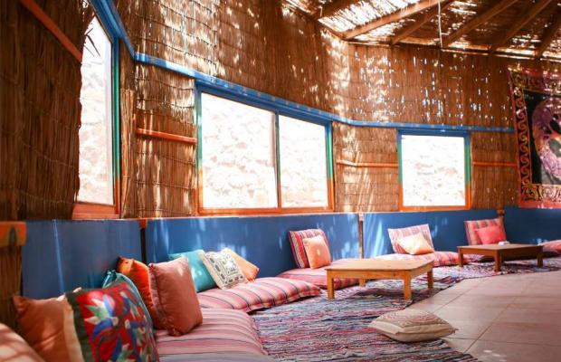 фотографии Safari Beach Nuweiba изображение №8