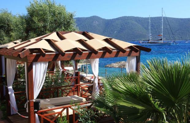 фотографии Ersan Resort & Spa изображение №12