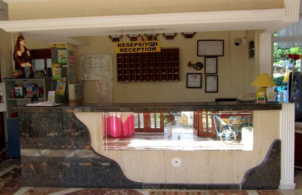 фотографии отеля Ikon (ex. Ekol; Lion; Nikomedia Kemer) изображение №7