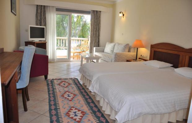 фотографии отеля Okaliptus изображение №11