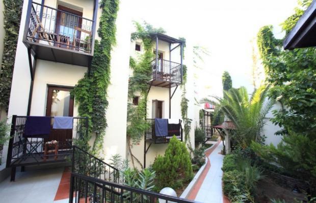 фотографии отеля Paloma изображение №15