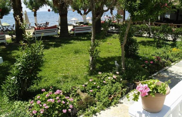 фотографии отеля Yilmaz изображение №11
