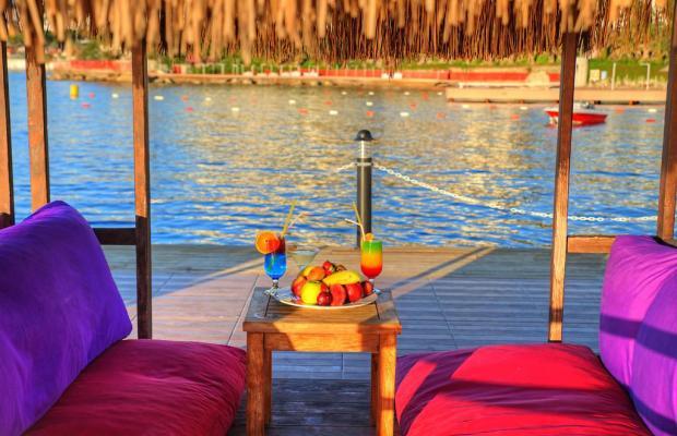 фотографии Le Bleu Hotel & Resort (ex. Noa Hotels Kusadasi Beach Club; Club Eldorador Festival) изображение №52
