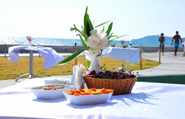 фото отеля Ephesia Holiday Beach Club изображение №29