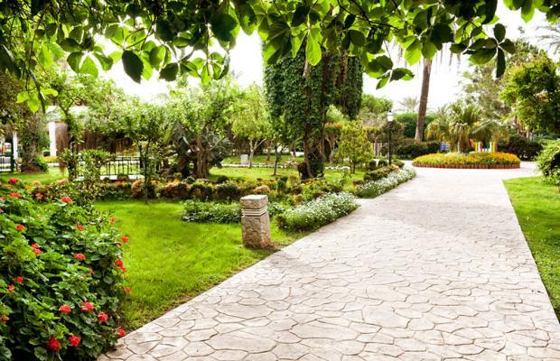 фотографии отеля Belconti Resort изображение №7