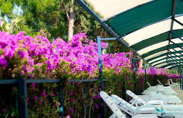 фотографии Green Hill Holiday Club (ex. Larissa Green Hill; Life Green Hill Hotel) изображение №20
