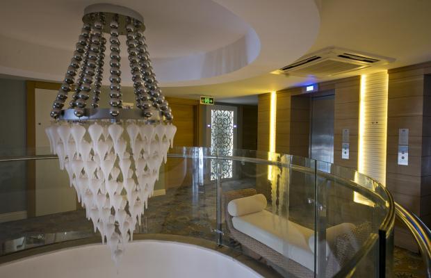 фото отеля Q Premium Resort изображение №9