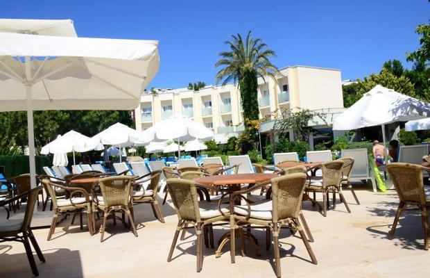 фотографии Palmet Resort Kemer (ех. Sentido Palmet Beach Resort; Palmet Resort) изображение №16