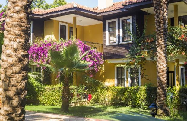 фотографии отеля Club Dizalya изображение №7