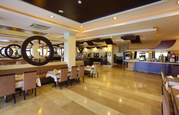 фотографии Telatiye Resort (ex. Seal of Star) изображение №16