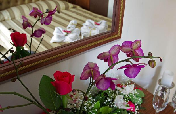 фотографии Mediterranean Resort изображение №28
