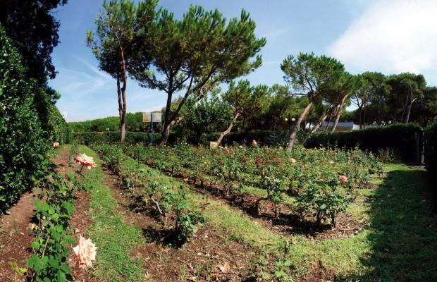 фото Della Baia изображение №22