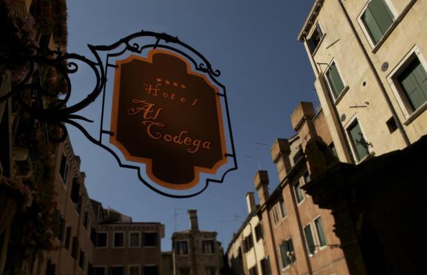 фотографии Al Codega изображение №28