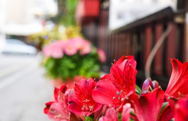 фото отеля Vassilia изображение №9