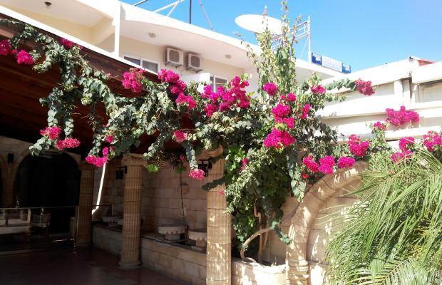 фото отеля Vasilios Studios изображение №1