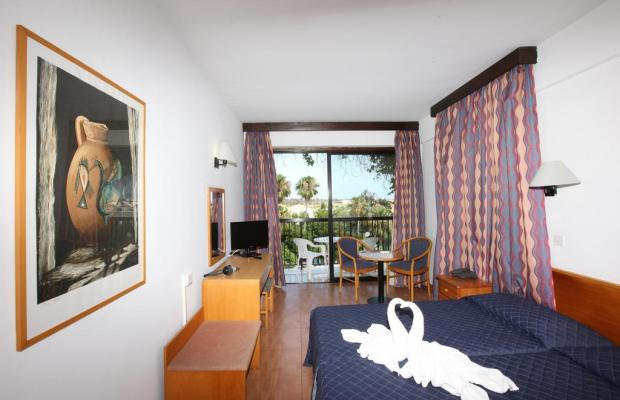 фотографии отеля Veronica изображение №3