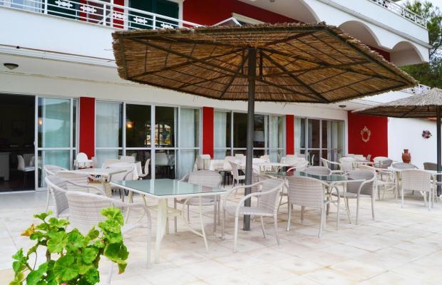 фотографии отеля Vasilikos Beach изображение №19