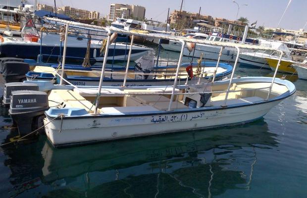 фото отеля Red Sea Dive Center изображение №9