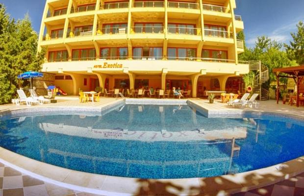 фото отеля Exotika (Екзотика) изображение №5