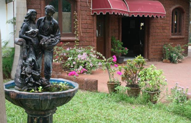 фотографии отеля Palm Resort изображение №15