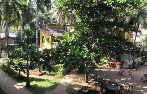 фотографии отеля Palm Resort изображение №7
